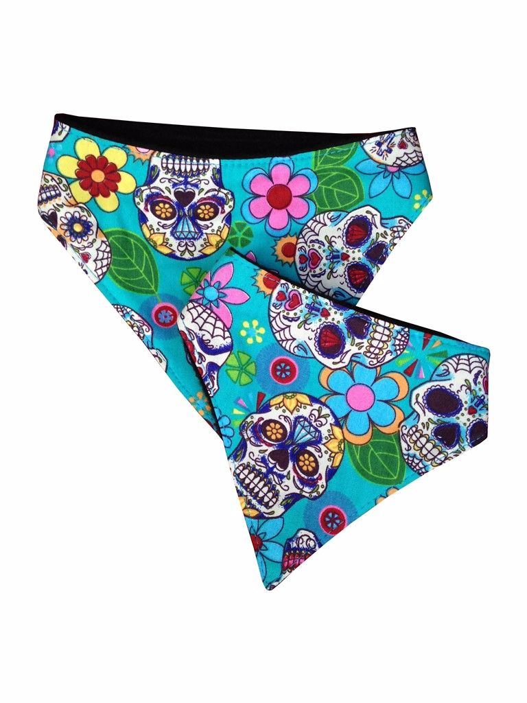 Day of the Dead Dog Bandana in Turquoise