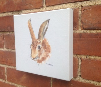 Hare OUT OF STOCK, CAN BE ORDERED