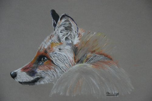 Fox - SOLD Prints and cards available