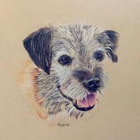 Sonny 3