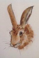 Hare SOLD - Prints and cards available