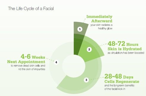 Facial Life Cycle