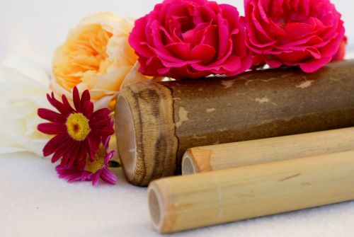 Accredited Bamboo Massage Course (1 day)