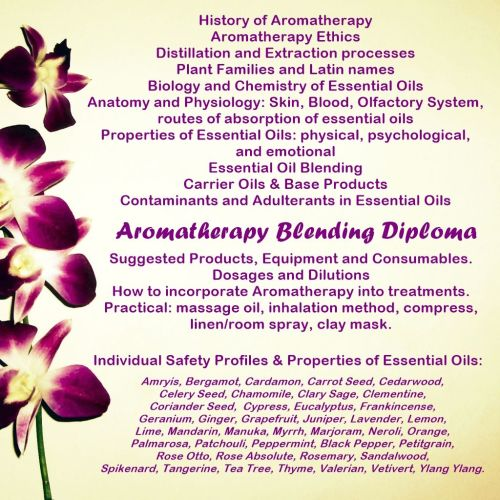 Accredited Aromatherapy Blending Course Stockport