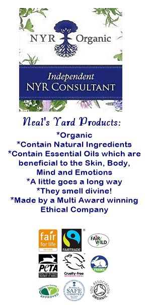 NYR Independent Consultant3b