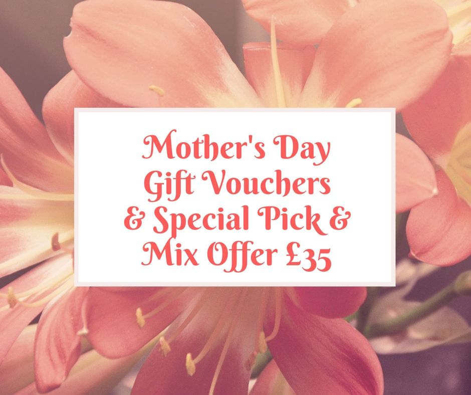 Mother's Day Gift Vouchers and Special Offer