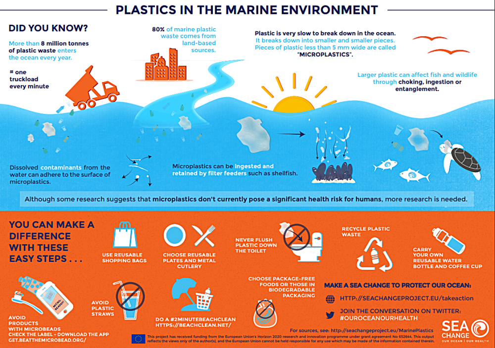World Ocean Day Infographic