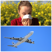 Hay Fever and Travel Soother