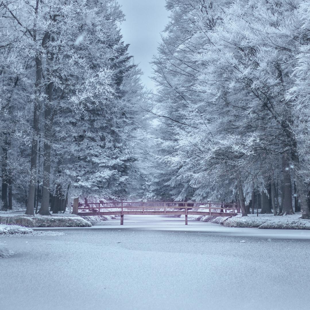 Winter Stillness Ritual Kit