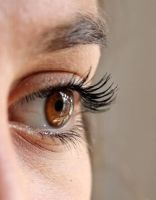 Accredited Lash & Brow Treatments and Lash Lift or Perm Diploma (1 day)