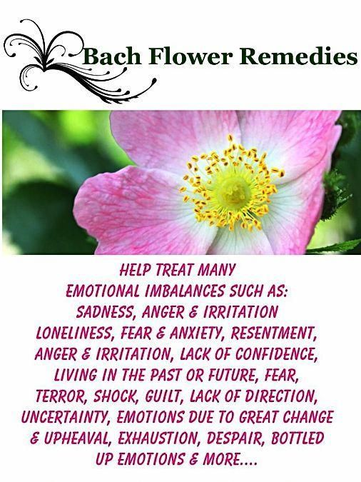 Bach Flower Consultations & Customised Remedies