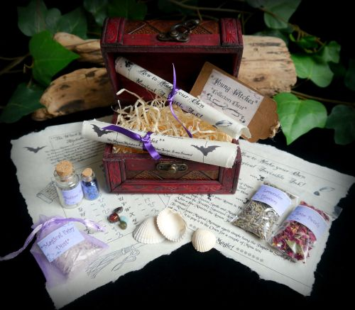 Young Witches Collector Chest Starter kit With Fairy Dust, Potion Bottle an