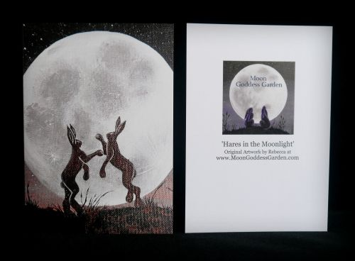 Moon gazing Hare Greeting Card 'Boxing in the Moonlight'