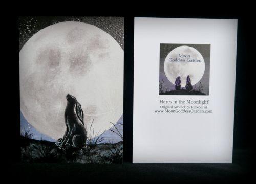 Moon gazing Hare Greeting Card 'Moon Gazing Hare'