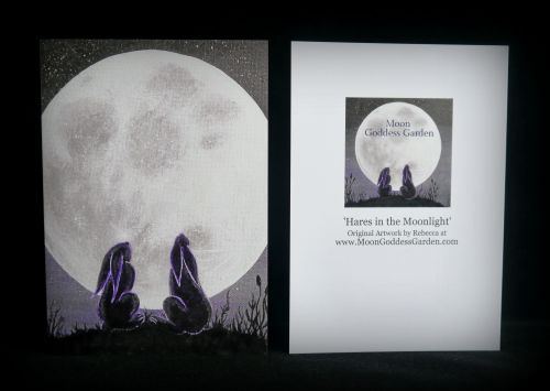 Moon gazing Hare Greeting Card 'Gazing Together'