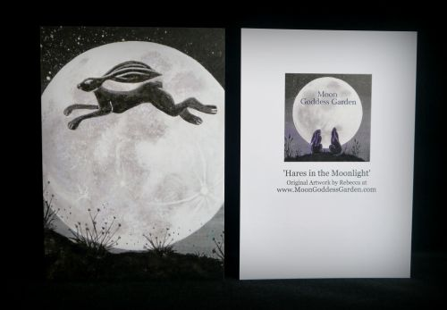 Moon gazing Hare Greeting Card 'Jump the Moon'