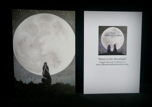Moon gazing Hare Greeting Card 'Moonlit Hare'