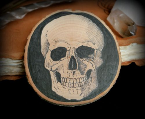 Witches Skull Pen and Ink Original drawing on Alder Wood