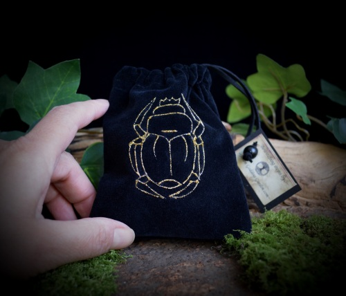 *Scarab* Velvet Rune Bag in Black Crystal Bag
