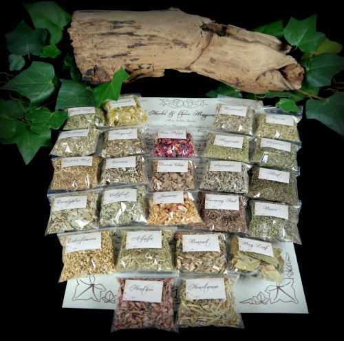 Witches 25 Herb Starter Kit