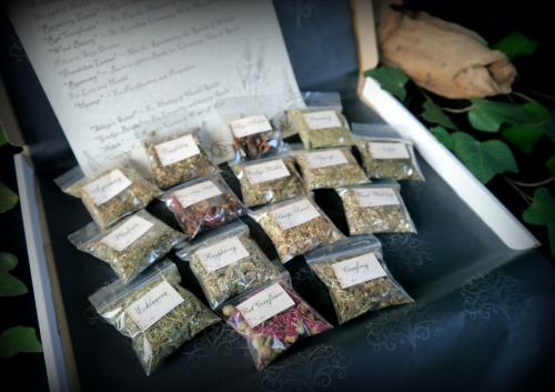 Witches 15 Herb Starter Kit with Leaflet Wiccan