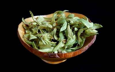 Hornbeam Seeds