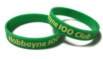 Hobbayne Primary School Custom Printed Junior Wristbands by Promo-Bands.co.