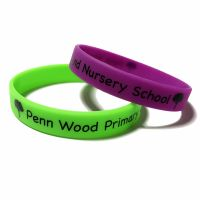 Penn Wood Primary 2 - Custom Printed School Trip Wristbands by Promo-Bands