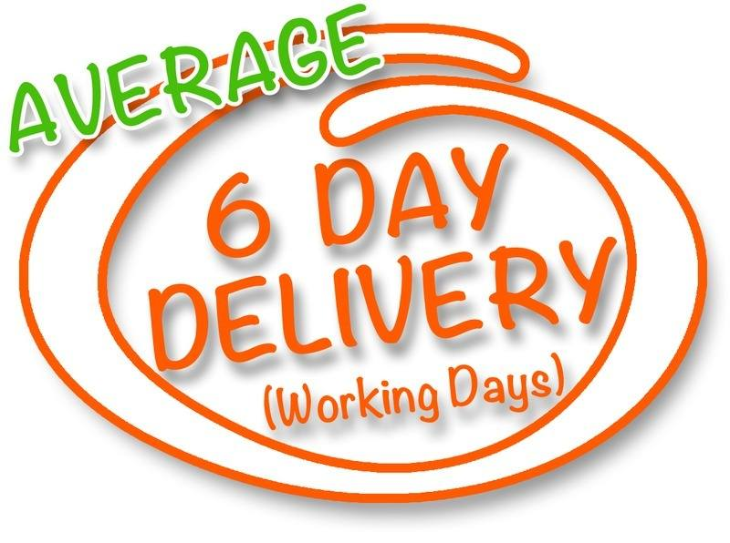 6-day-delivery-ornage