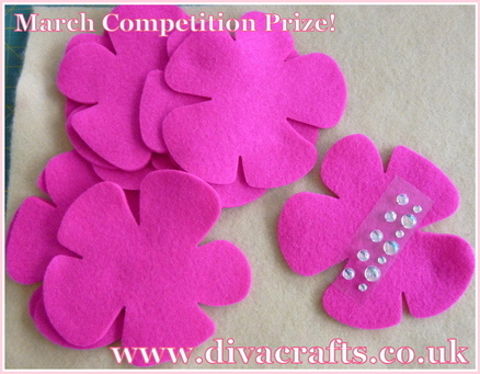 March competition prize felt flower kit at Diva Crafts