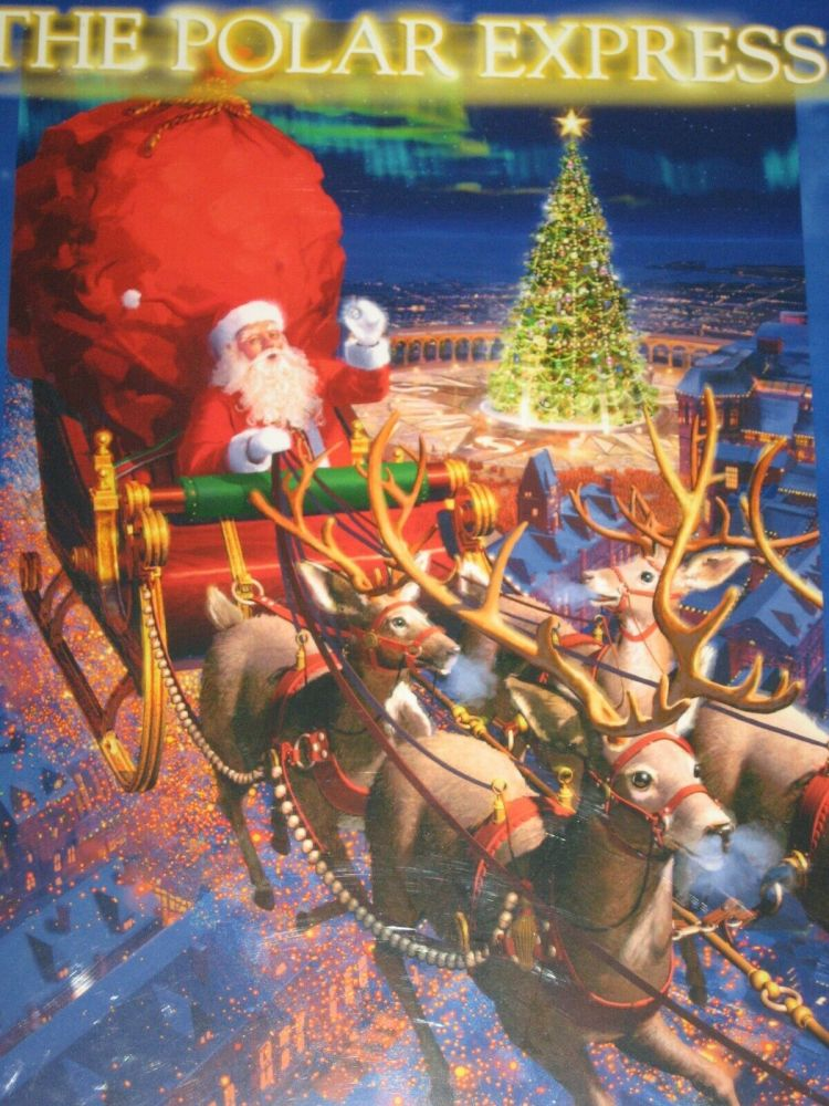Polar Express Santa and Sleigh Puzzle 300pcs