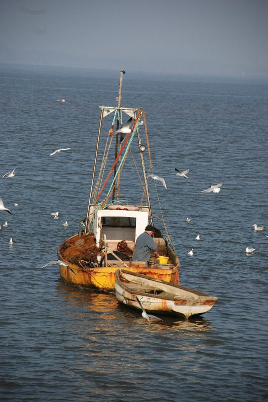 boats-fishing-in-Morecambe-Bay-1-by-P-Forster-Morecambe-Bay-2