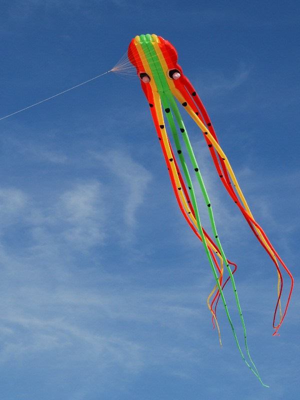 catch-the-wind-festival-P-Forster-Morecambe-2