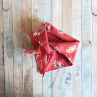 Red Daisy Triangular Tie On Dog Bandana