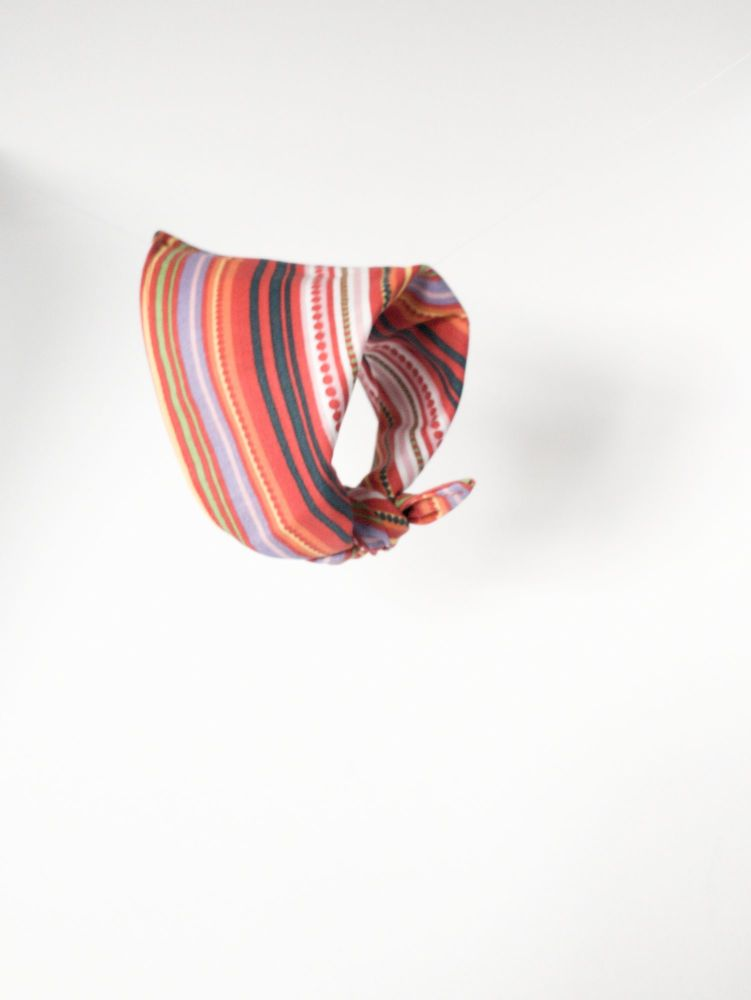 Brightly Striped Triangular Tie On Dog Bandana