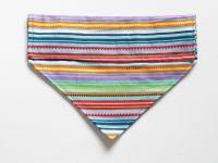 Summer Stripes Over Collar / Over Collar Dog Bandana