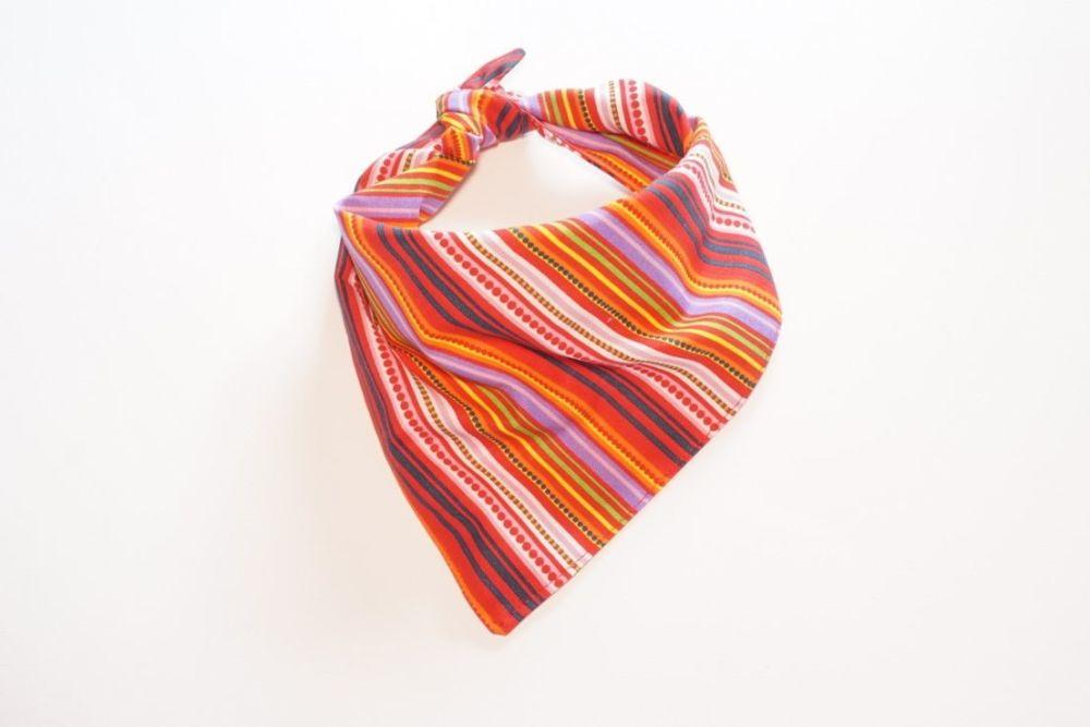 Brightly Striped Triangular Tie On Dog Bandana