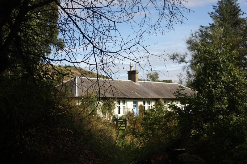 another view of cottage