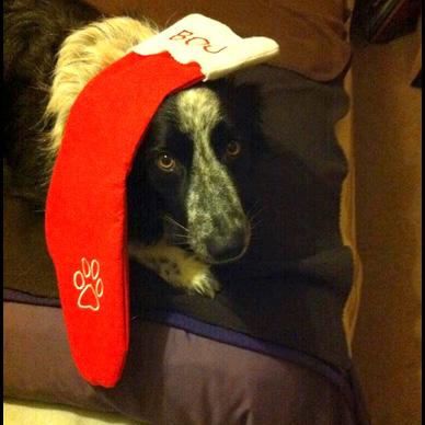 boo stocking