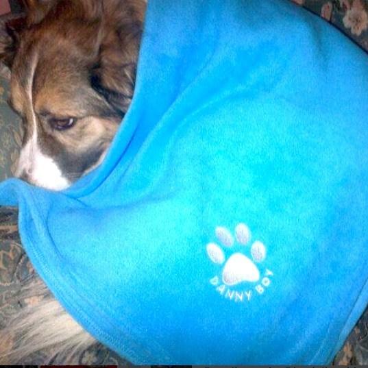 danny boy blanket