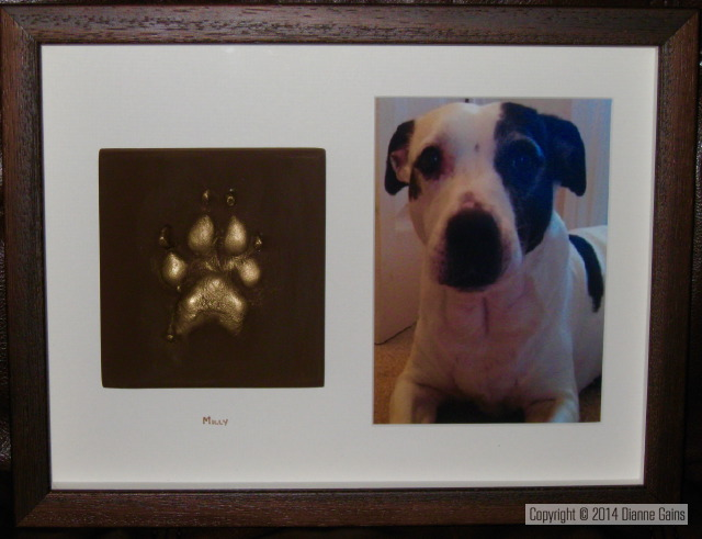 Single Pet Paw with a 6x4 photo Small Dogs