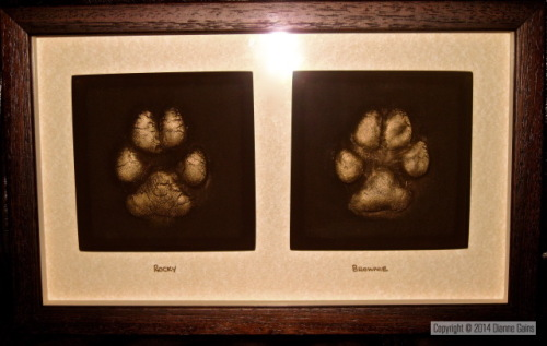 2 Pet Paws Small - Medium Dogs