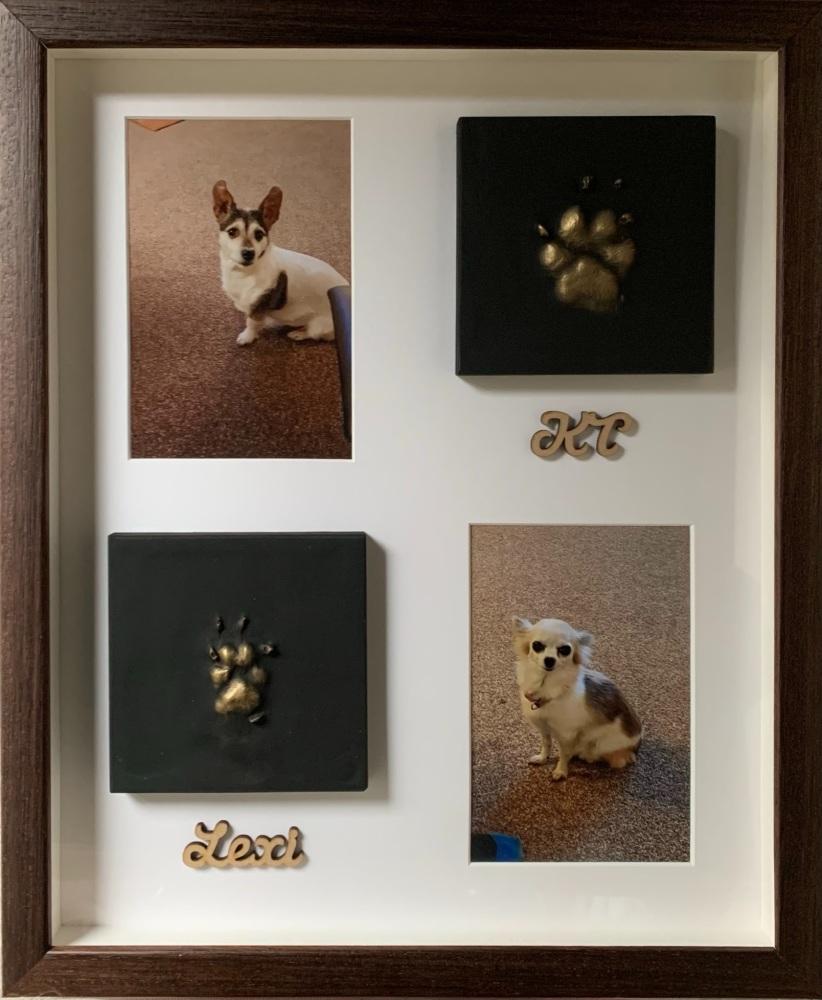 2 Pets Paws & 2 Photos