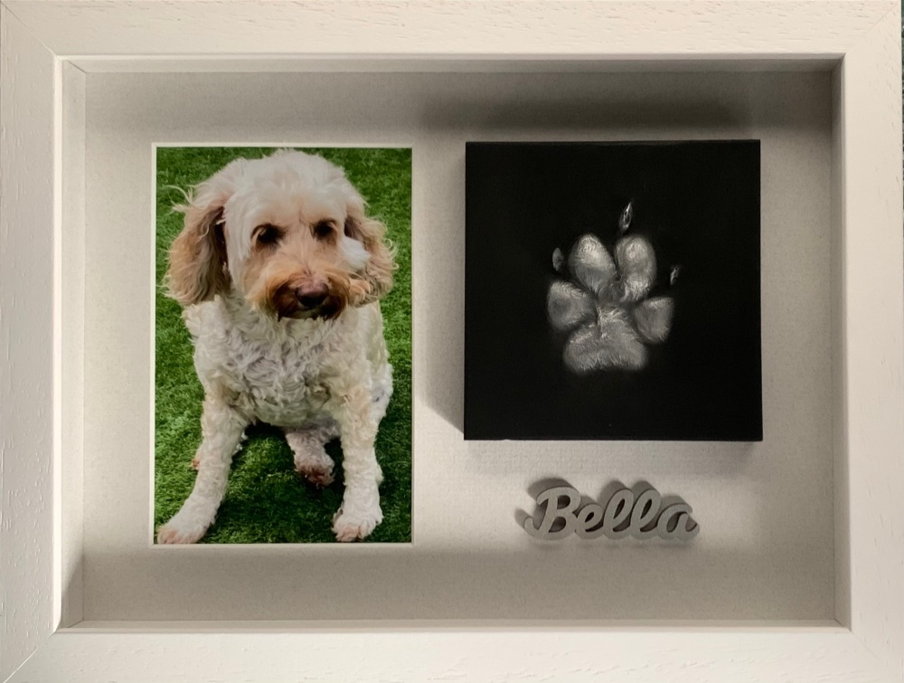 Pet Paw with a 6x4 photo - Small
