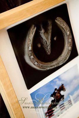 Horses Hoof & Photo