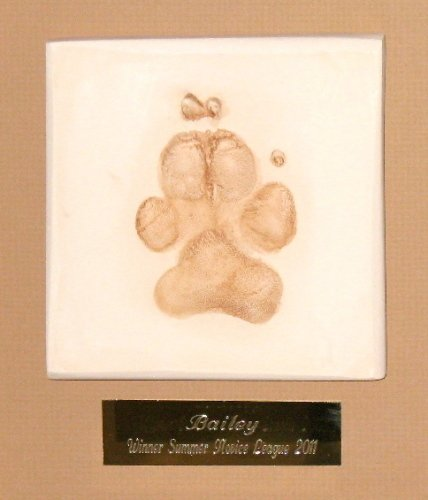 Single Pet Paw Framed