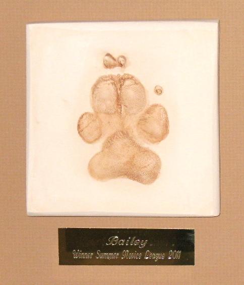 Single Pet Paw Framed