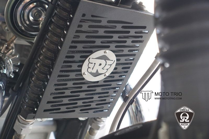 OmegaRacer MotoTrio Royal Enfield Cooler Guard (4)