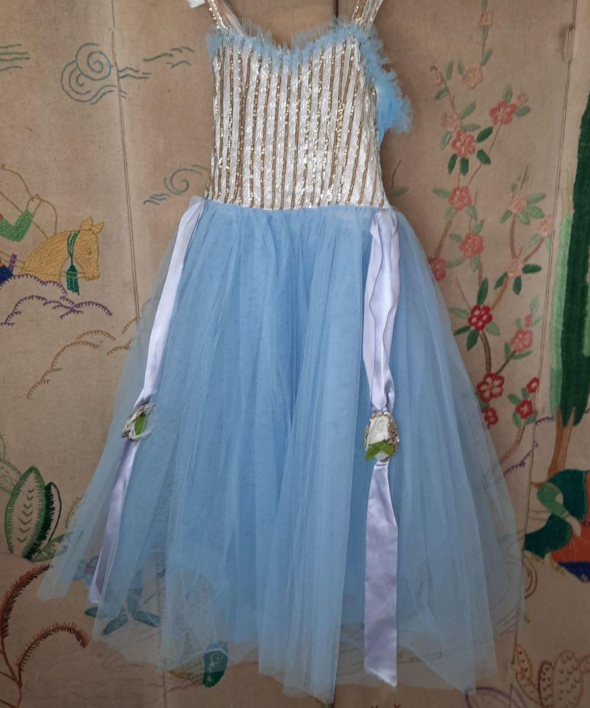 Vintage Ballerina Costume