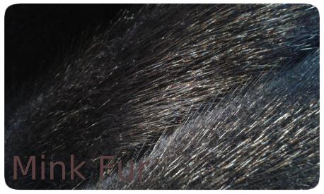 20141016_133922 dark mink